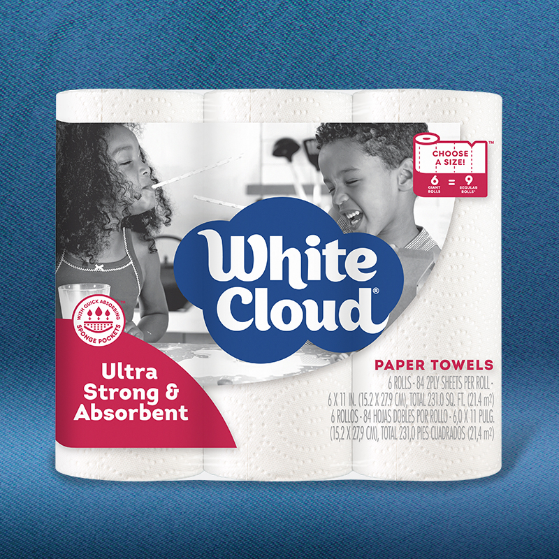 Ultra Strong and Absorbent